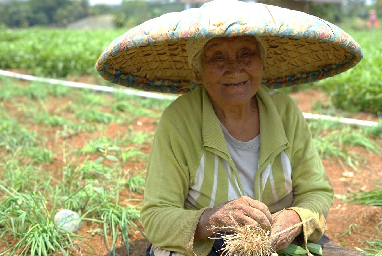 Female farmers face multi-layered struggle