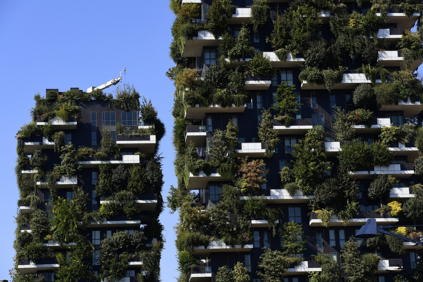 Five plant-covered buildings for greener environment