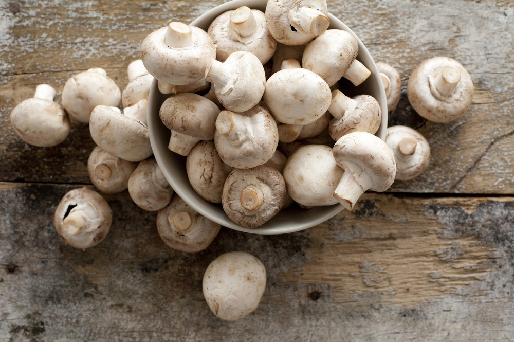 Eating mushrooms may slow mental decline: Study
