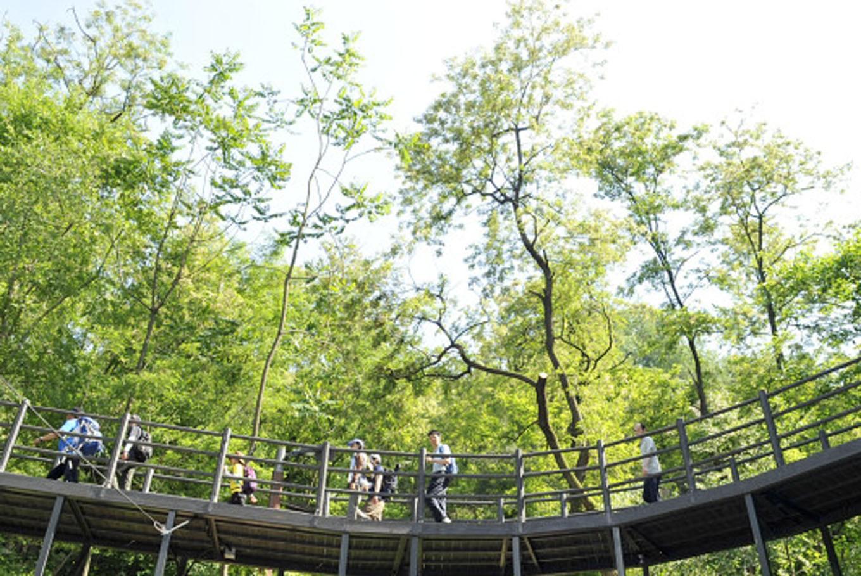 Green trail of Ansan embracing Seoulites seeking quick getaway