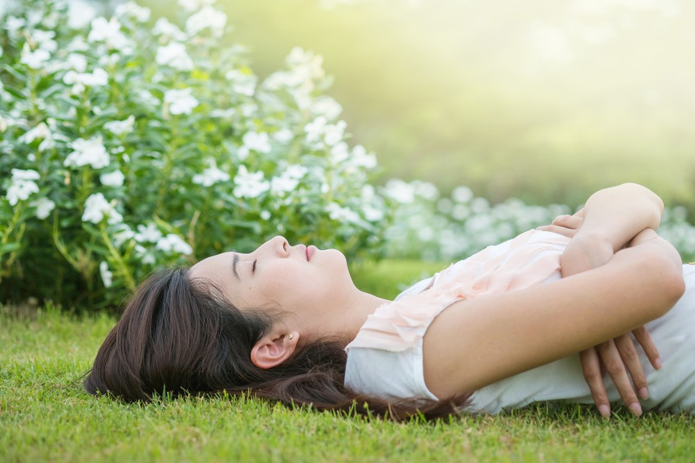 Five plants to help you sleep and breathe better: NASA research