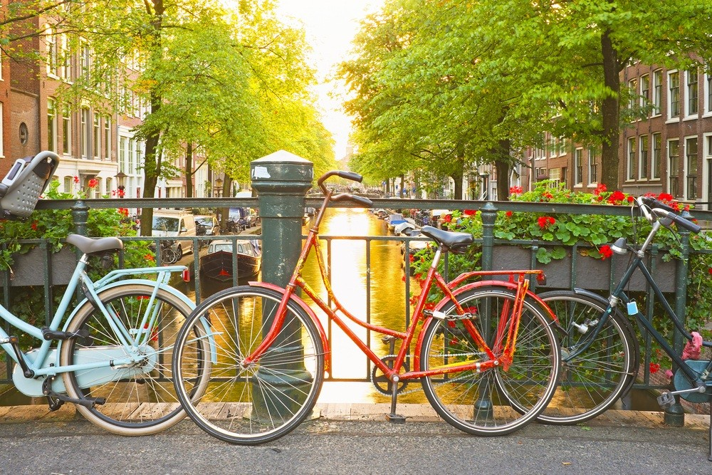 Amsterdam bans controversial 'beer-bikes'