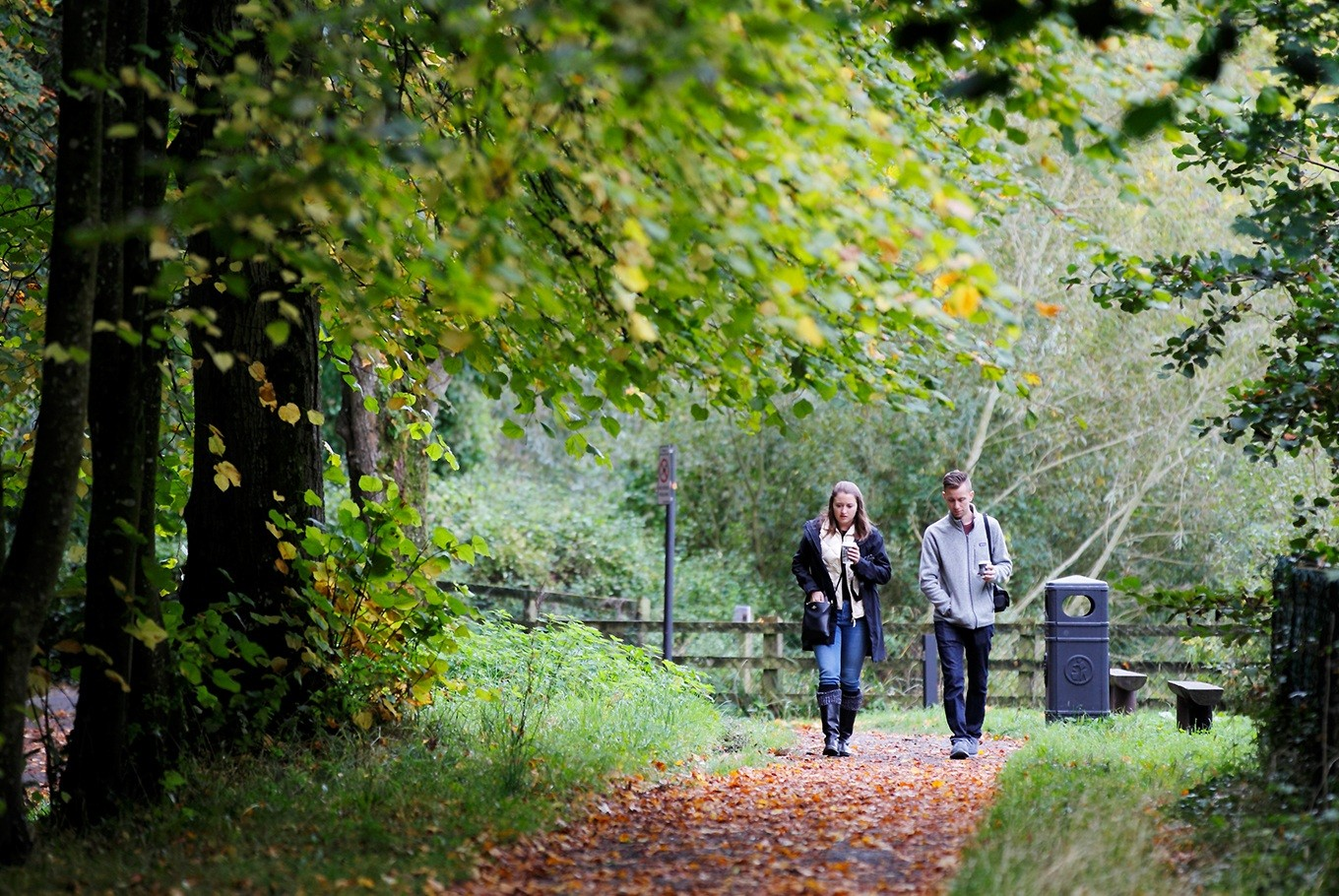 In contrast to the delightful tamed urban space of St. Stephen's Green in Dublin, the Kilkenny Canal Walk, which begins just under Kilkenny Castle meanders through 1.7 impossibly green kilometers along the banks of the Nore River.