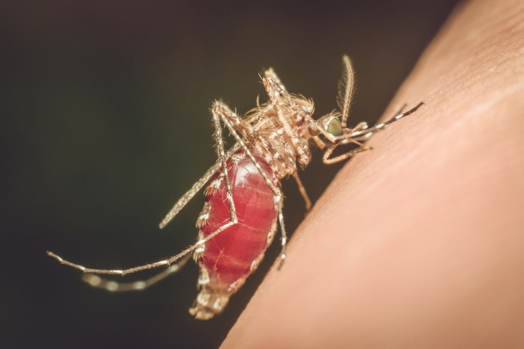 End of malaria in sight