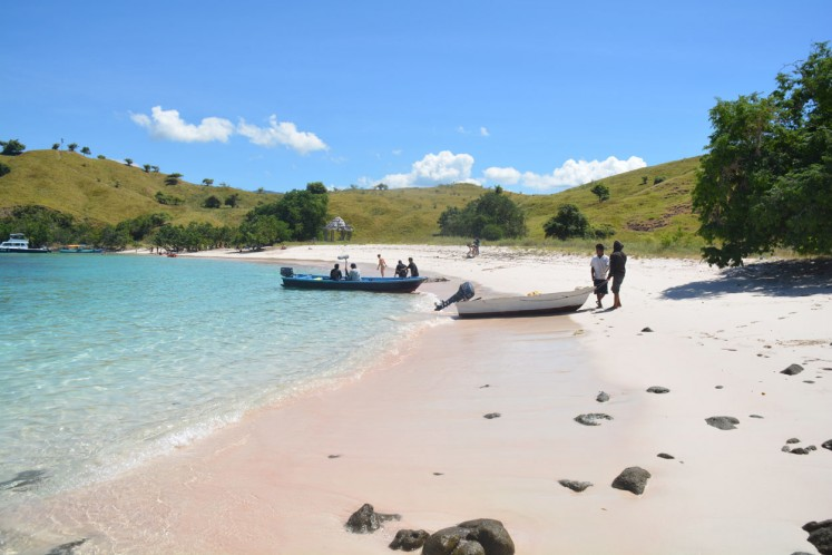 Domestic and foreign tourists are seen at the Pink Beach in the Komodo National Park in West Manggarai, Flores, East Nusa Tenggara (NTT) on May 10, 2017. The site has become a popular spot for foreign visitors who want to enjoy natural beach and underwater beauty.