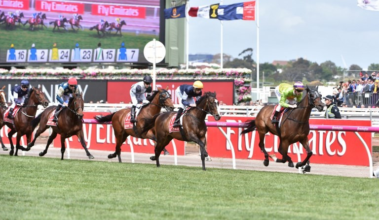 Jockey suspended for punching horse