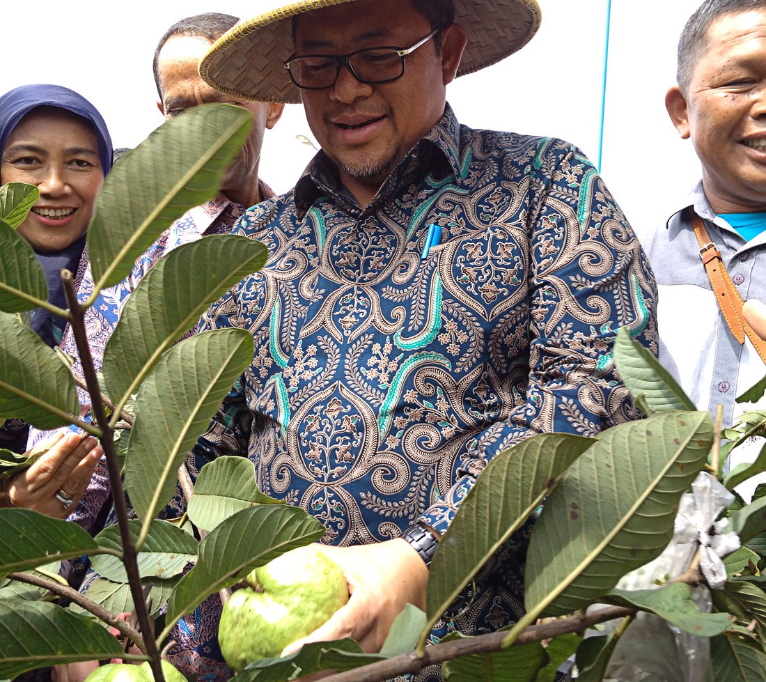 West Java key to achieving RI's food self sufficiency targets