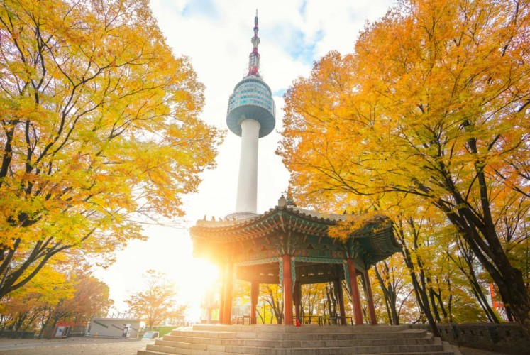 Is one day strolling in Seoul enough?