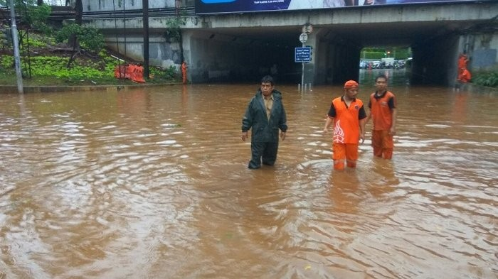 Heavy rainfall in Jakarta topples trees, disrupts traffic