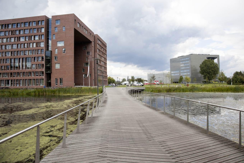 Wageningen University ranked world's greenest campus: UI survey