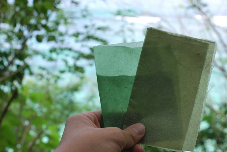 Evoware is able to produce 60 sheets of biodegradable packaging in a day.