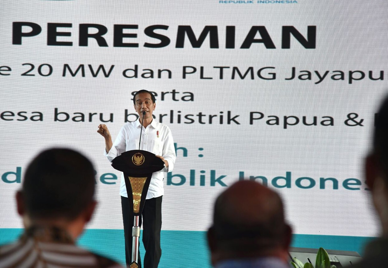 All Papuan villages to receive electricity in 2018: Jokowi