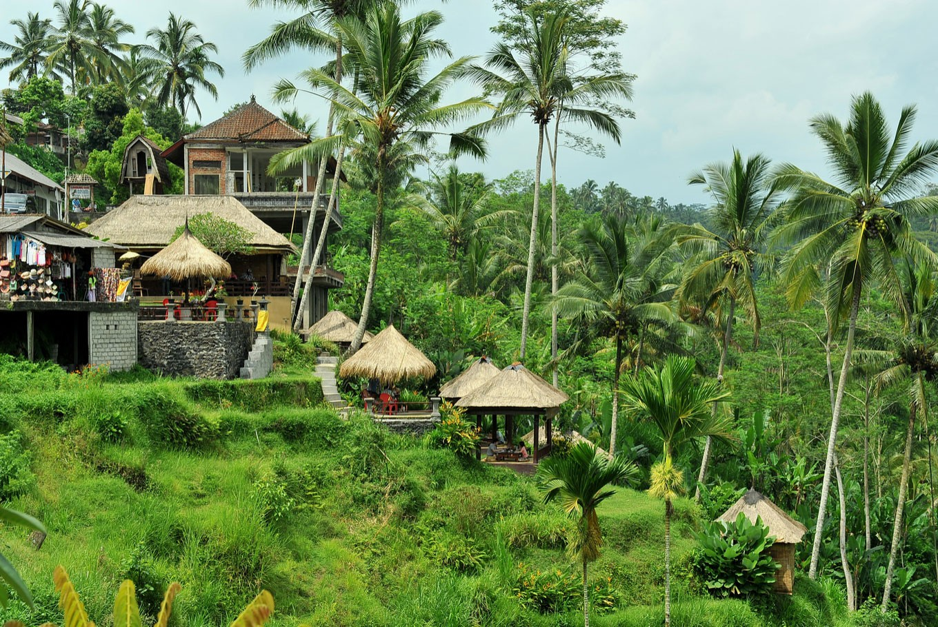 Unveiling gem in northern Bali:  Mayong village