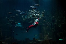 A man dressed as Santa Claus dives in the Paris aquarium on December 21, 2017. AFP/Alain Jocard