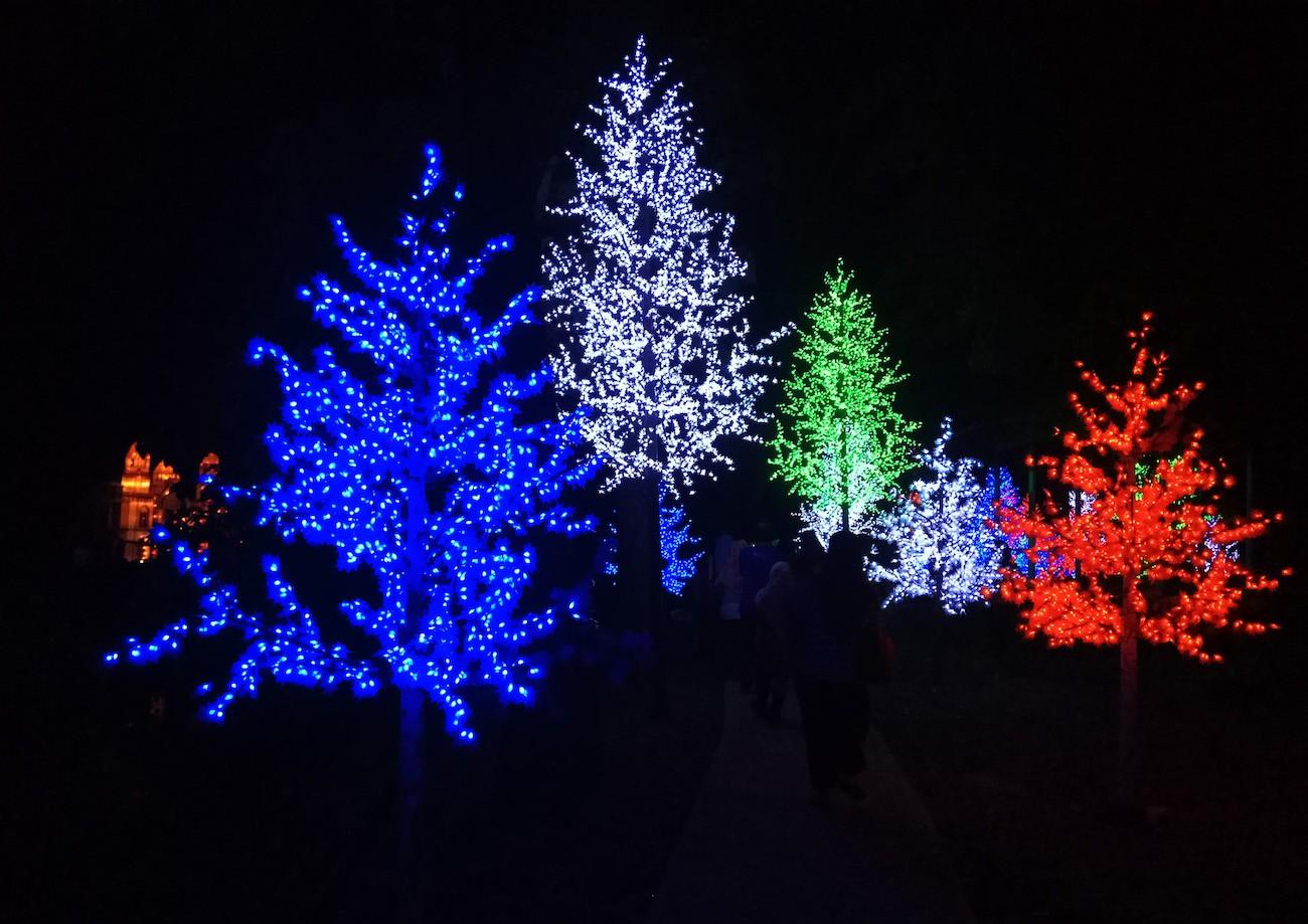 Illuminated trees at Taman Pelangi..