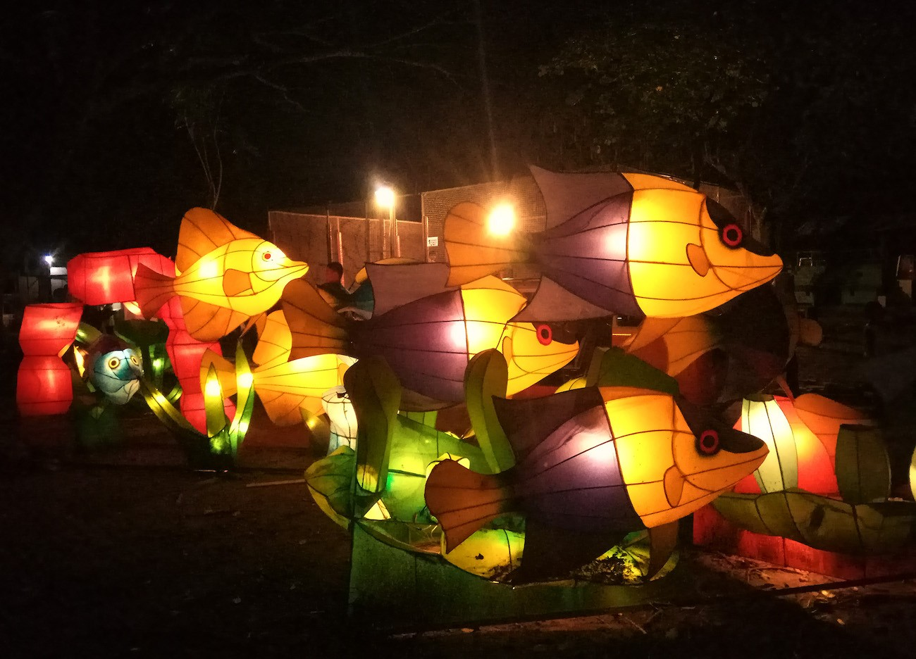Fish-shaped lanterns at Taman Pelangi in Surakarta, Central Java.