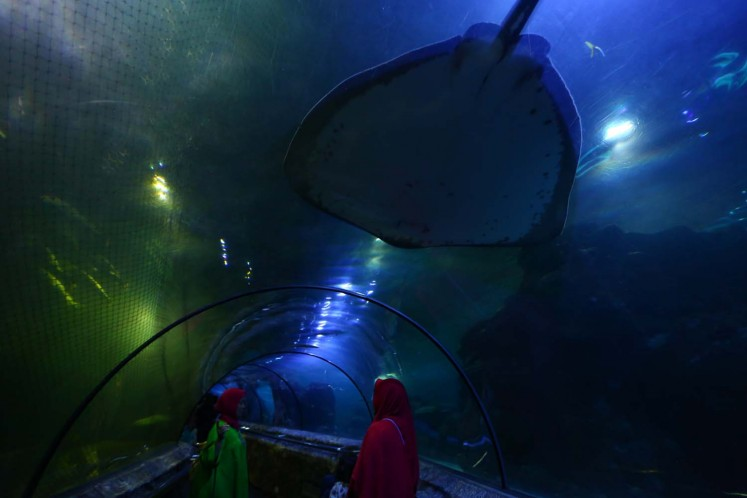 Inside a tunnel that is connected to the Main Aquarium at SeaWorld, Ancol, in North Jakarta.