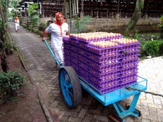 A worker pushes a cart filled with eggs. The egg production has increased by 11 percent after the Renaa Farms applied bio-security measure. JP/Ganug Nugroho Adi