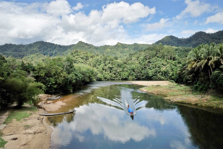 Pristine: A view of Kotolamo, the heart of the Bukit Rimbang Bukit Baling Wildlife Sanctuary in Riau.