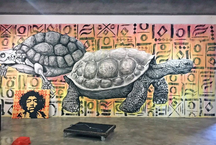 Esthetic: The rising popularity of murals is attributed to the ability of street artists to create works that are both thought provoking and visually captivating.