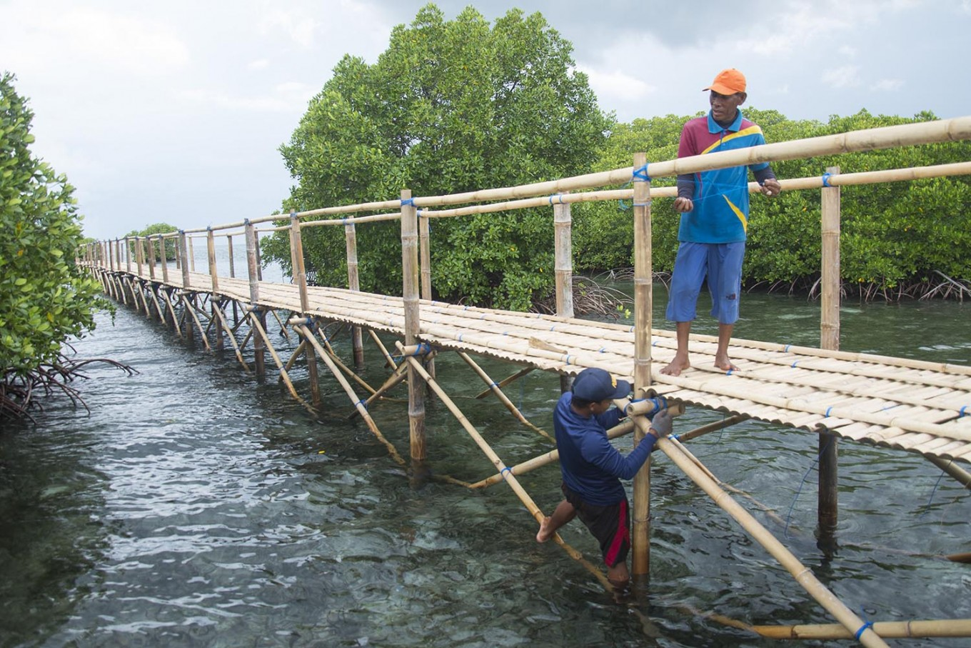 Connectivity: Locals build a bridge for mangrove tourism. JP/ Tarko Sudiarno