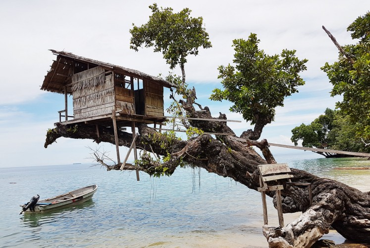 Home sweet home: A treehouse at Kali Lemon Dive Resort.