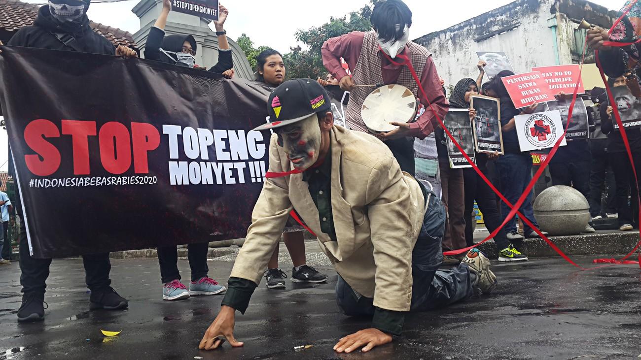 "Animal lovers call on Yogyakarta authorities to ban ""topeng monyet"""