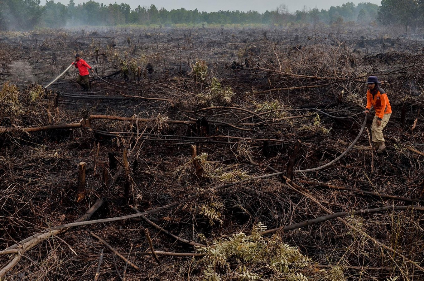 Wildfires rage on in Riau, authorities use helicopters to put out flames