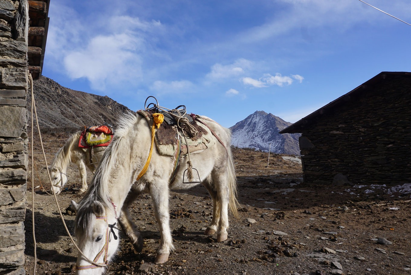 Mount Siguniang: Sacred place for Tibetans, paradise for climbers