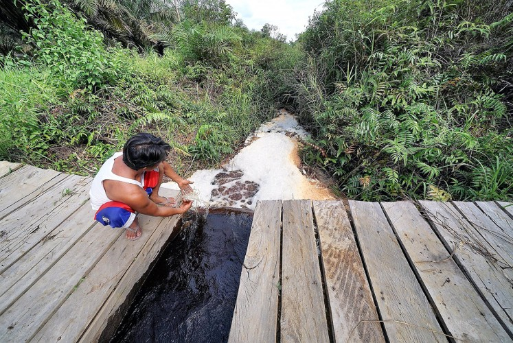 Controlling water: A man inspects a canal partition in Pandan Sejahtera village, which is used to regulate the release of water onto the peatland.