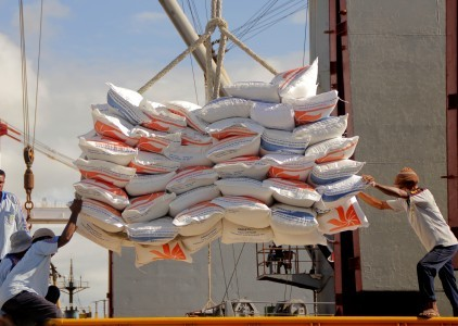 Indonesia to import 500,000 tons of more rice