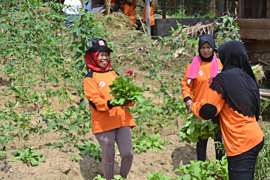 Women can sustain agriculture, but better data needed to support them