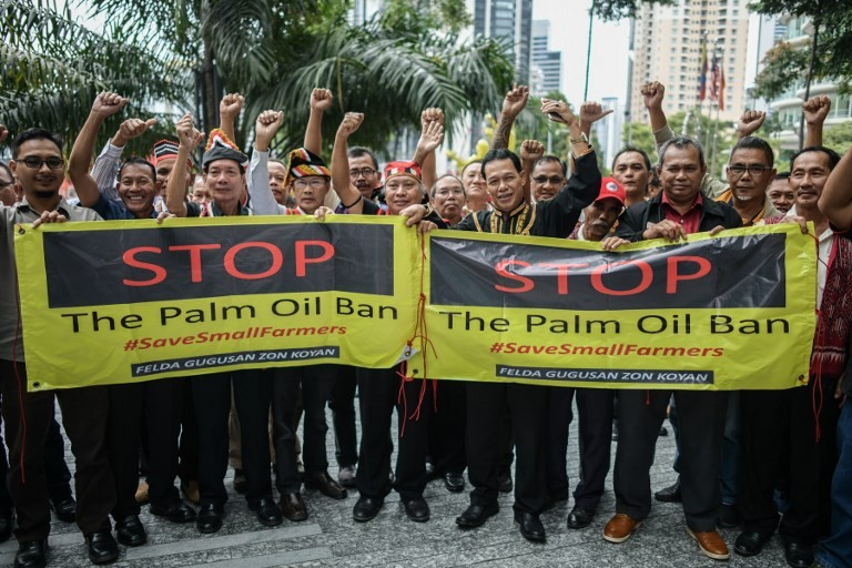 Malaysia to press EU on planned palm oil ban in biofuels