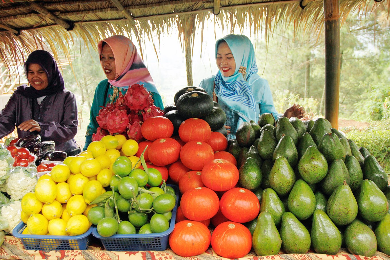 Fruit exports grow, imports decrease - Business - The