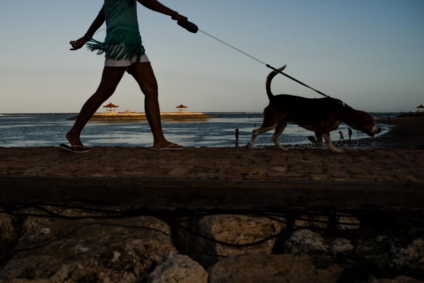 Walking with a friend: A woman walks her dog on the shores of Sanur Beach in Denpasar, Bali. JP/ Anggara Mahendra