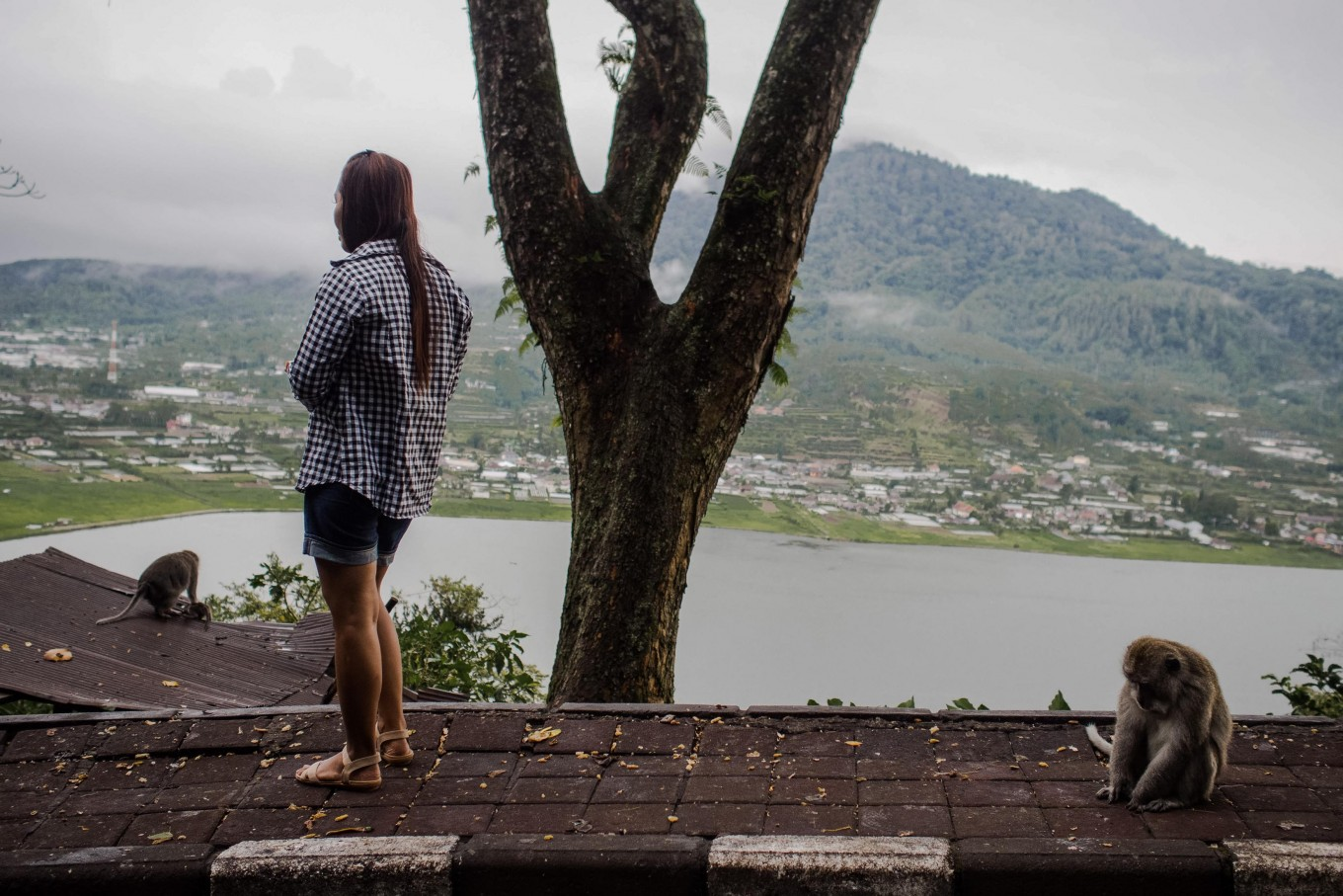 Gazing upon the horizon: A woman enjoys the view with a monkey sitting behind her in Wanagiri village in Tabanan, Bali. JP/ Anggara Mahendra