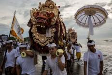 King of spirits: Male participants carry the sacred Tiger Barong. JP/Agung Parameswara