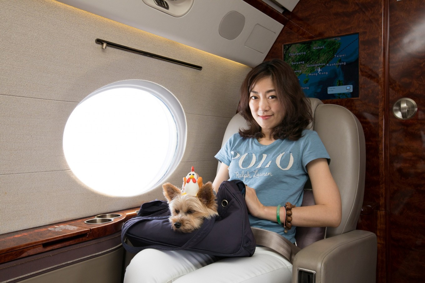 pamper pooches travel in style Pamper your pet with a day  click here for more woof-worthy travel stories  wading areas and lazy rivers to pooches retire in style at the exquisite and pet .