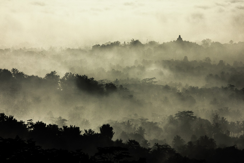 Java beats Bali, Lombok, as 'best island in the world'