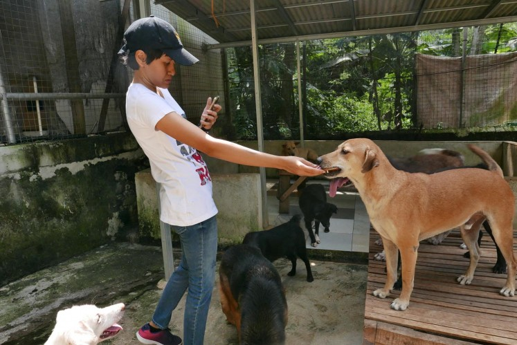 Icha, the operational director of Garda Satwa Indonesia, takes a photo of one of the dogs.