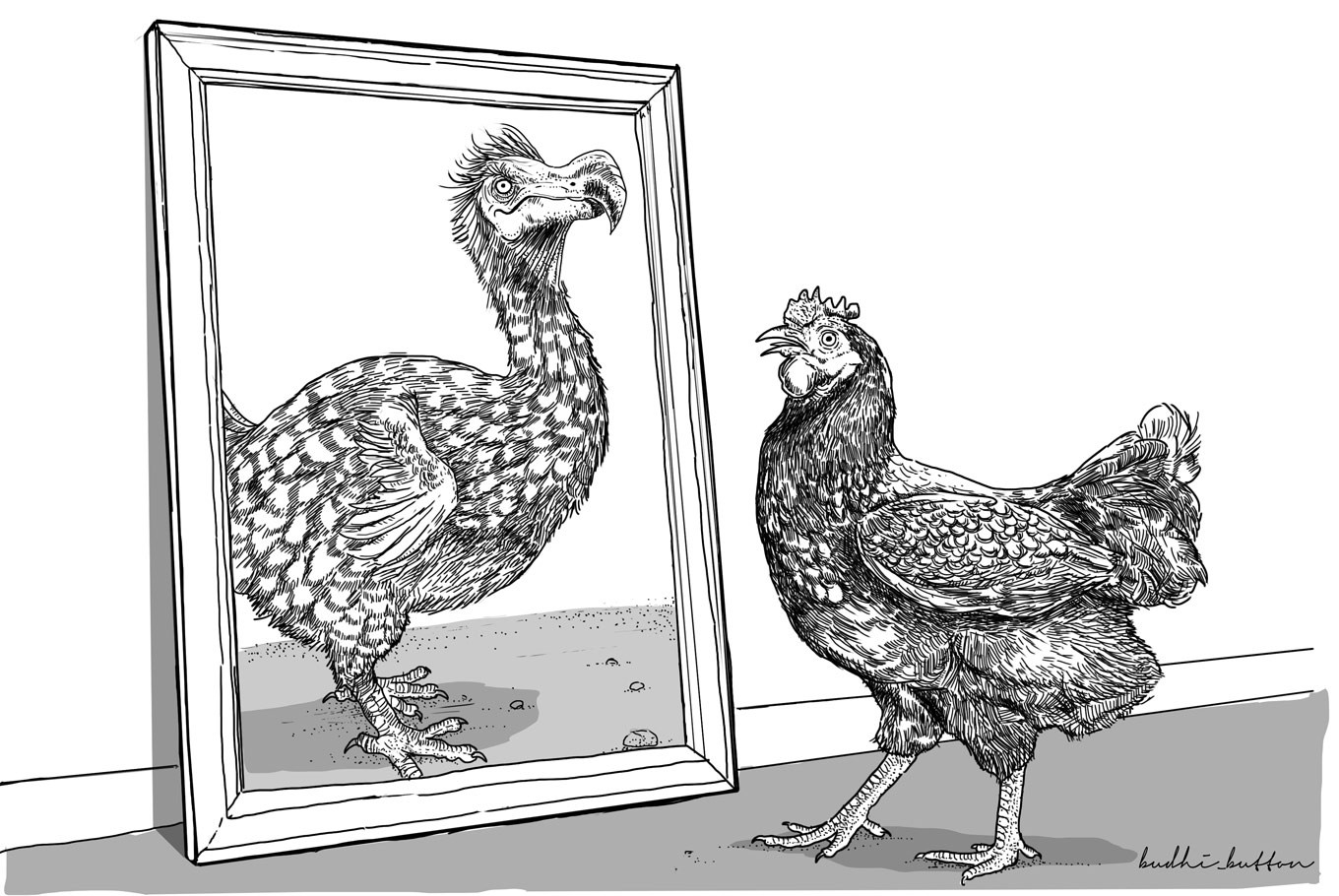 Short Story: The Dodo