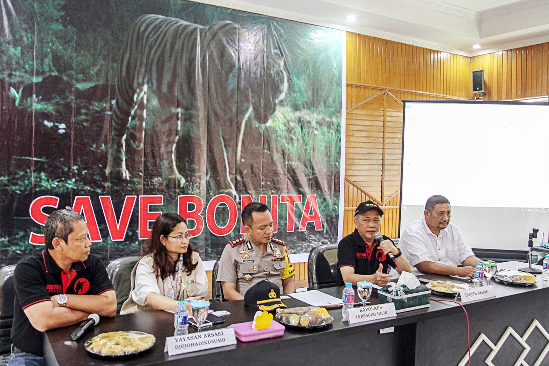 Rescued Sumatran tiger is improving, says conservation group