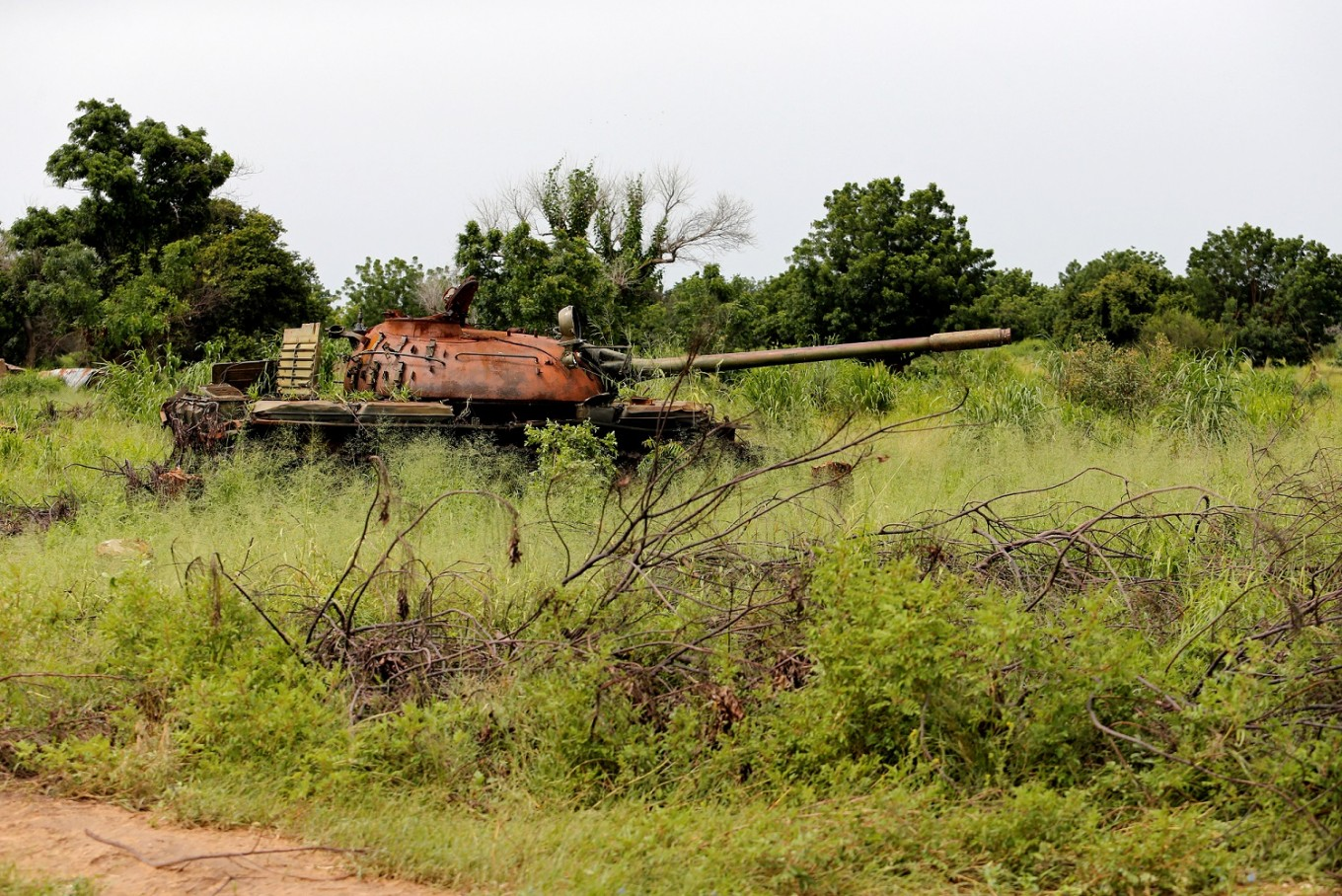 Nigeria's army wants to make Boko Haram's forest stronghold a tourism spot