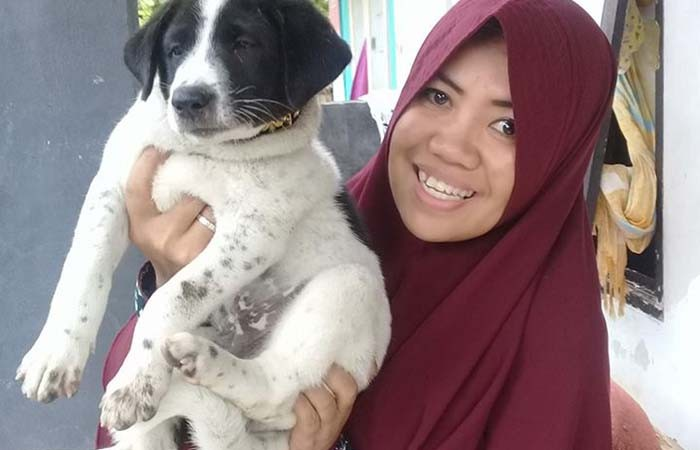 How a woman saves stray dogs in Lombok, alone