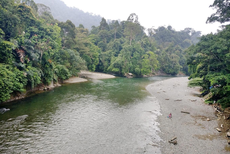 Balancing forests against livelihoods