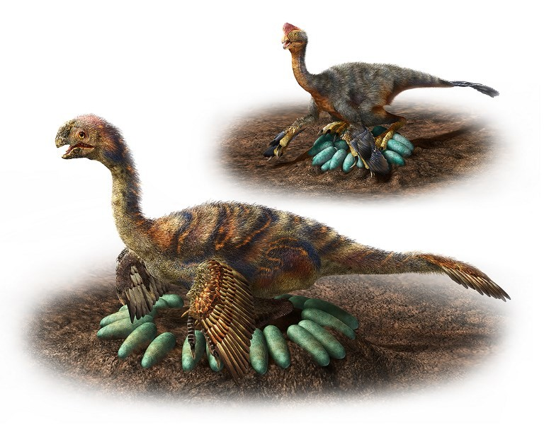 How does a one-tonne dino hatch its eggs? Carefully