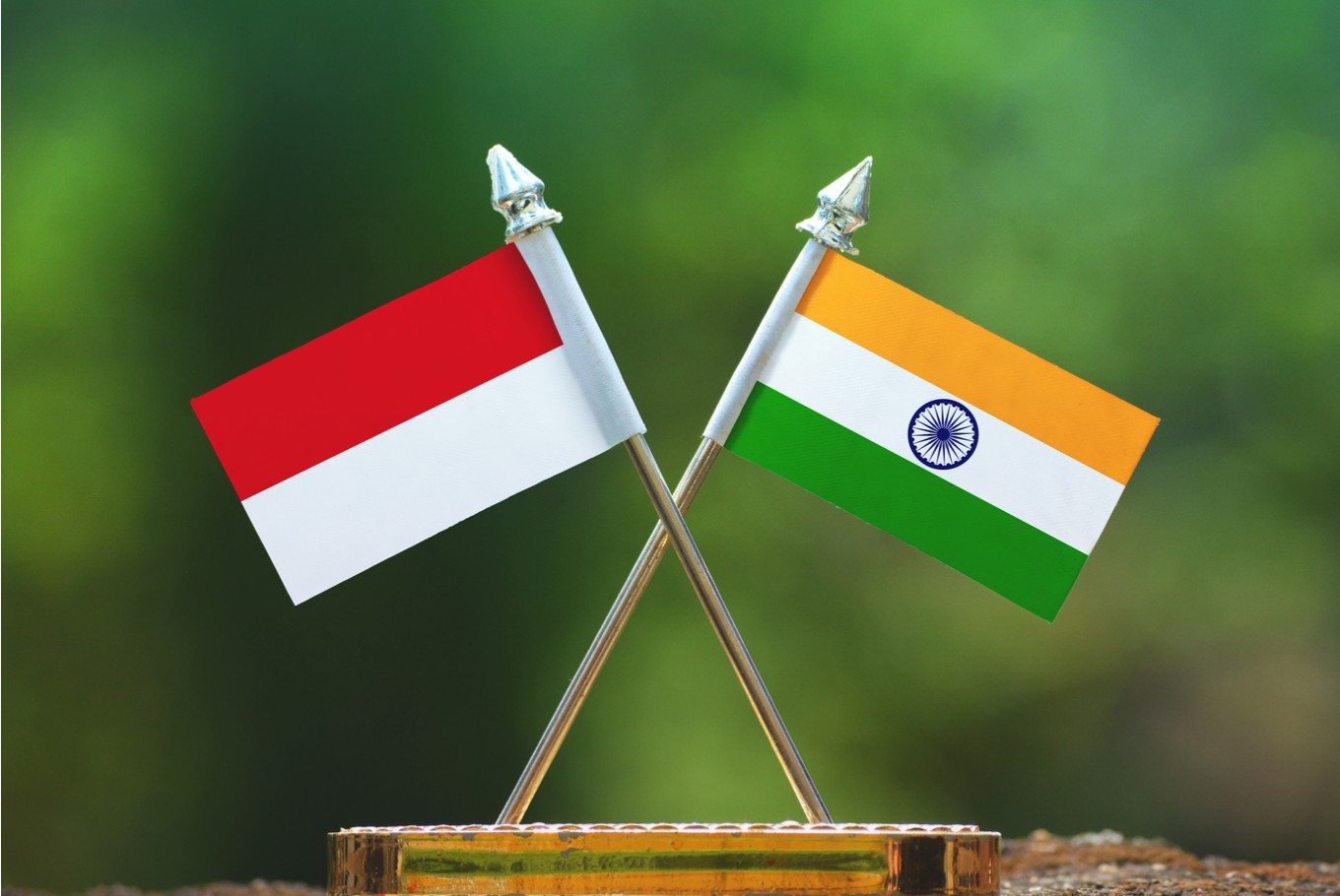 Healthcare, IT open new road to India-Indonesia friendship