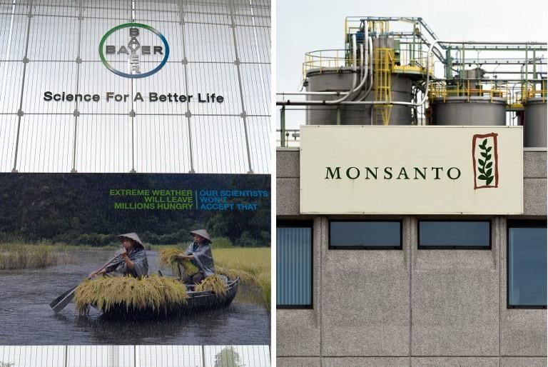 Bayer CEO defiant on Monsanto after $289 million Roundup verdict