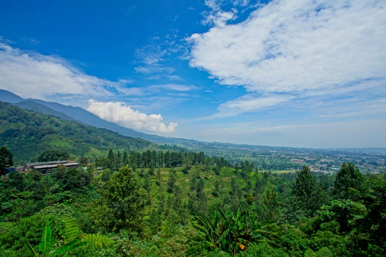 Three luxury accommodations in Puncak