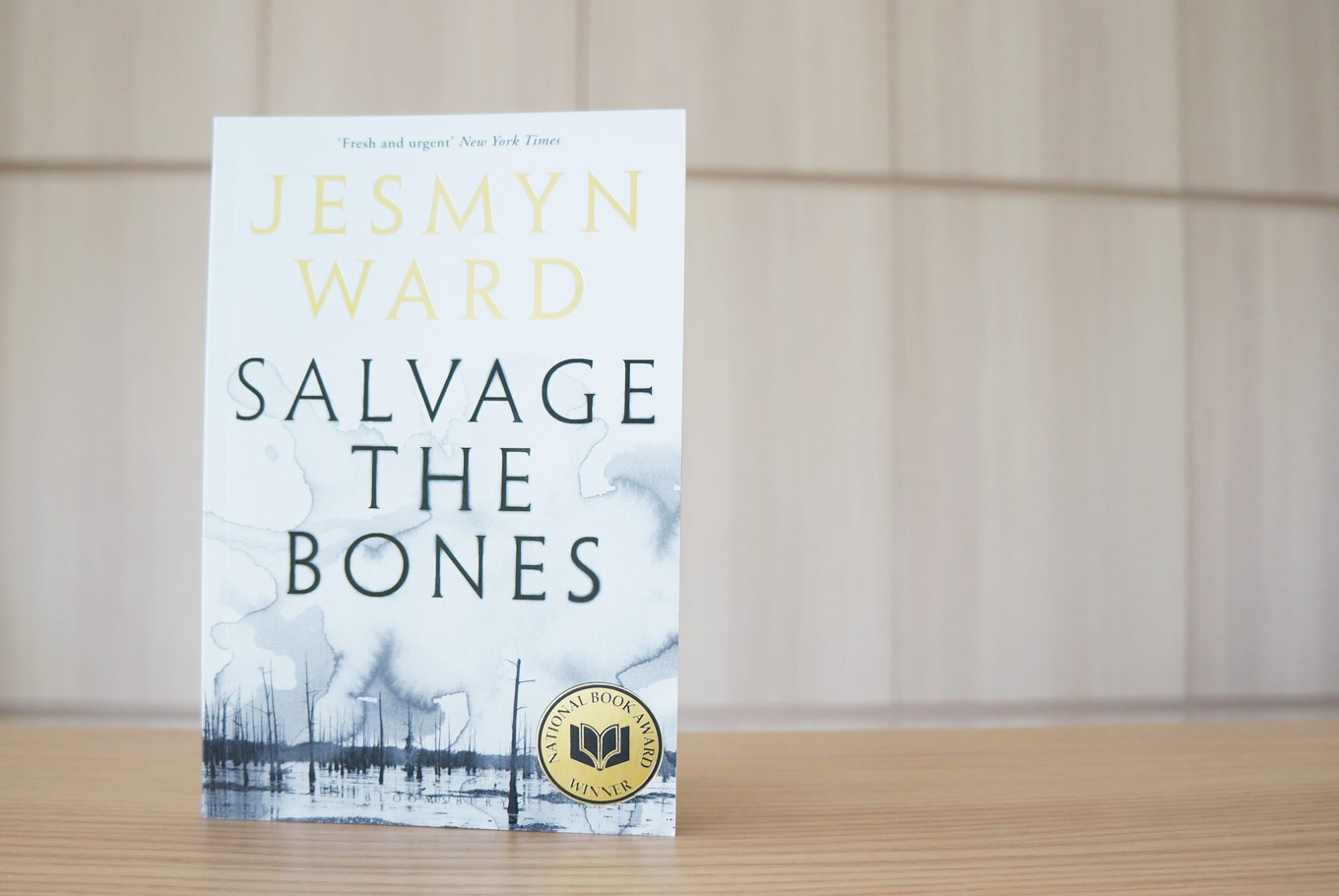 Book Review: 'Salvage the Bones', a great read about a broken family